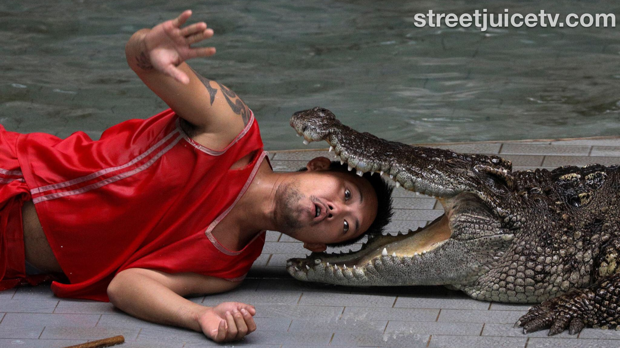 53 Year Old South Carolina Women Eaten By Alligator