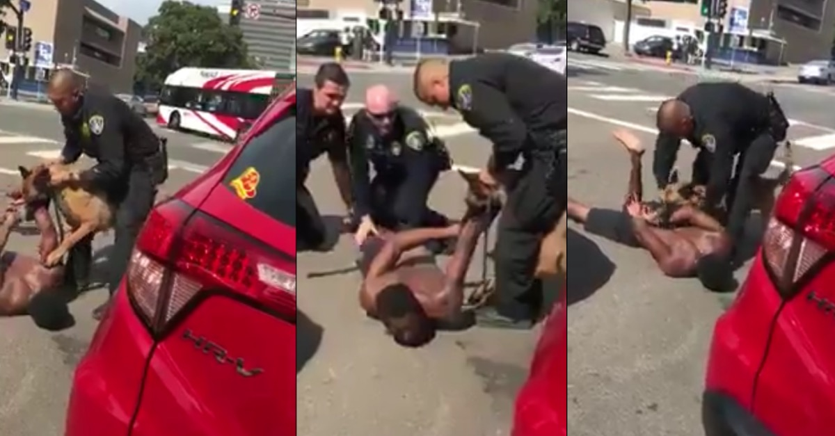 Police Makes Dog Eat Black Man's Arm In Handcuffs